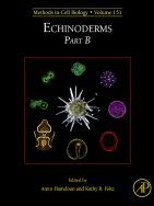 Expression of exogenous mRNAs to study gene function in echinoderm embryos