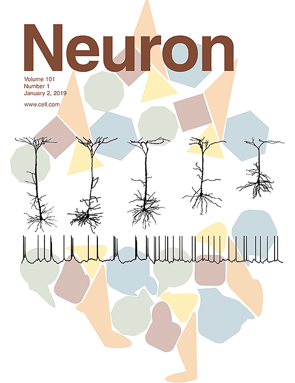 Migraine-Associated TRESK Mutations Increase Neuronal Excitability through Alternative Translation Initiation and Inhibition of TREK