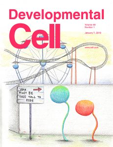 An EGF-Responsive Neural Circuit Couples Insulin Secretion with Nutrition in Drosophila