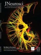 Developmental Requirement of Homeoprotein Otx2 for Specific Habenulo-Interpeduncular Subcircuits