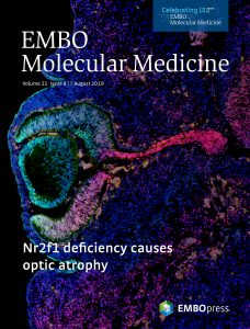 Mouse Nr2f1 haploinsufficiency unveils new pathological mechanisms of a human optic atrophy syndrome