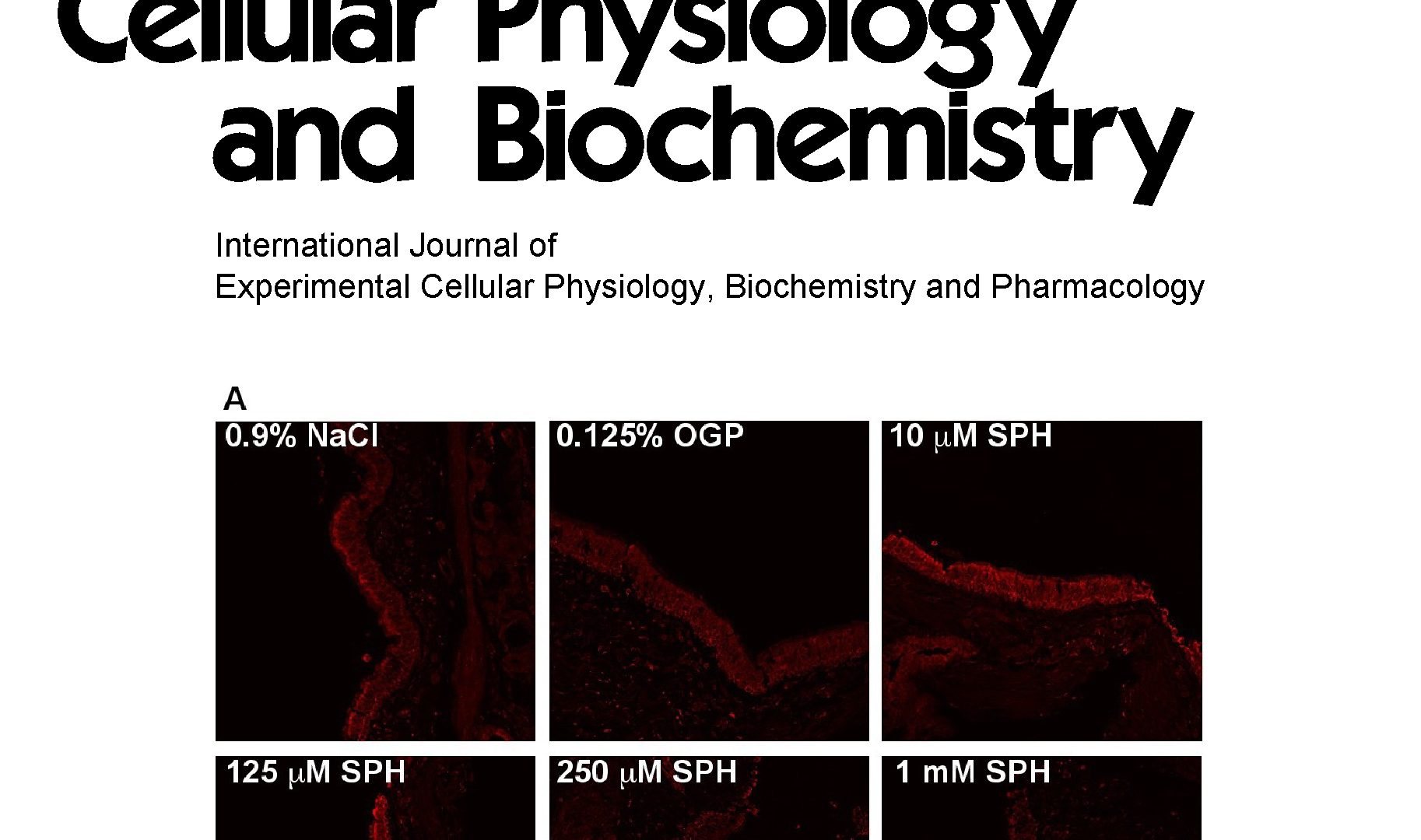 Control of Muscle Fibro-Adipogenic Progenitors by Myogenic Lineage is Altered in Aging and Duchenne Muscular Dystrophy