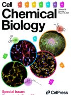 A fine-tuned azobenzene for enhanced photopharmacology in vivo